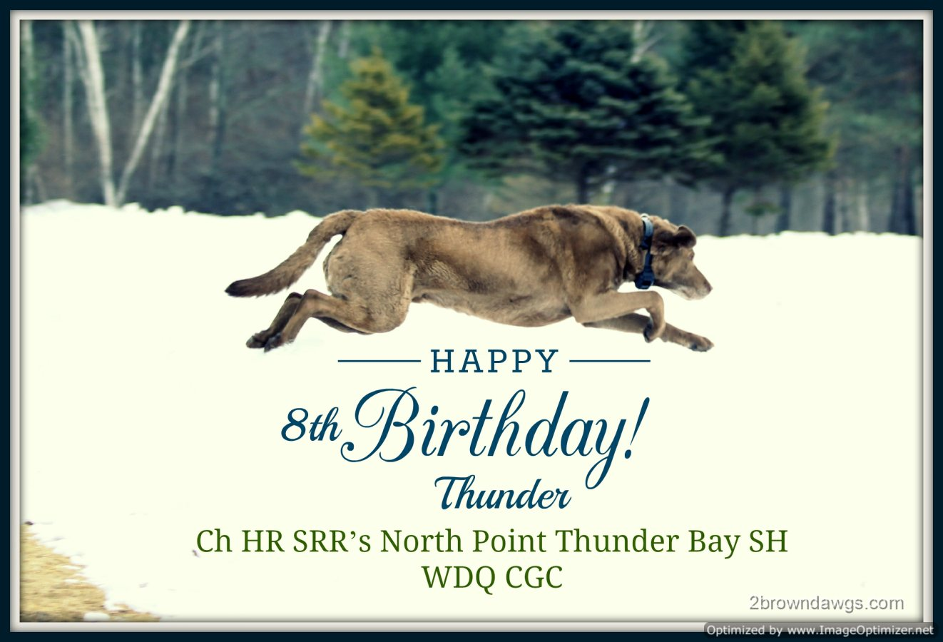 20140309-Thunder 8th Birthday