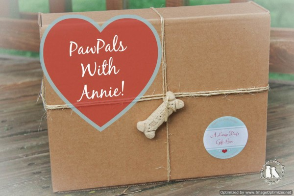 PawPals With Annie!