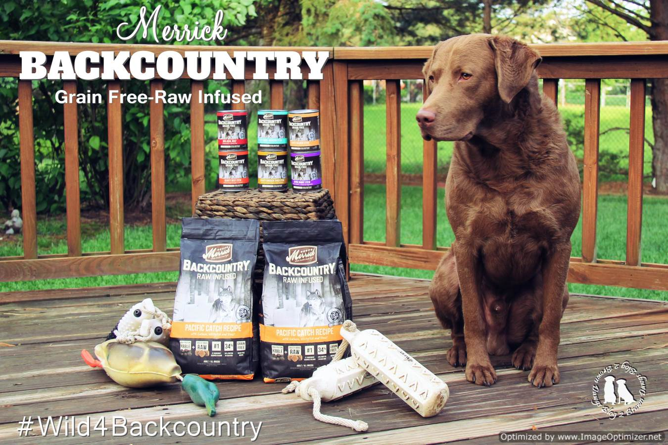 Merrick's Backcountry Grain Free Raw Infused Dog Food