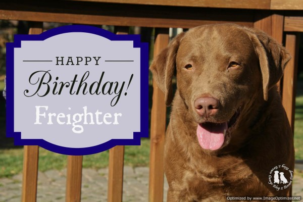 Happy 4th Birthday Freighter