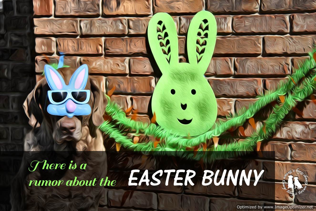 A Rumor About The Easter Bunny