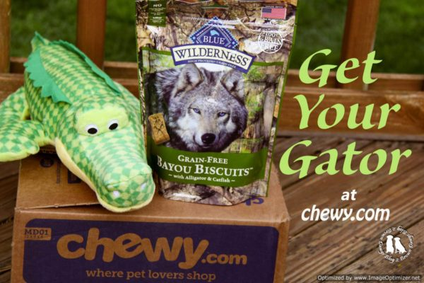 Get Your Gator At Chewy.com