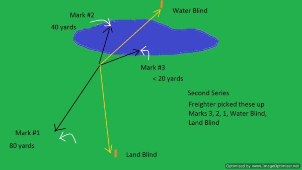 WDQ Second Series-Combo Land Water Triple, Water Blind, Land Blind