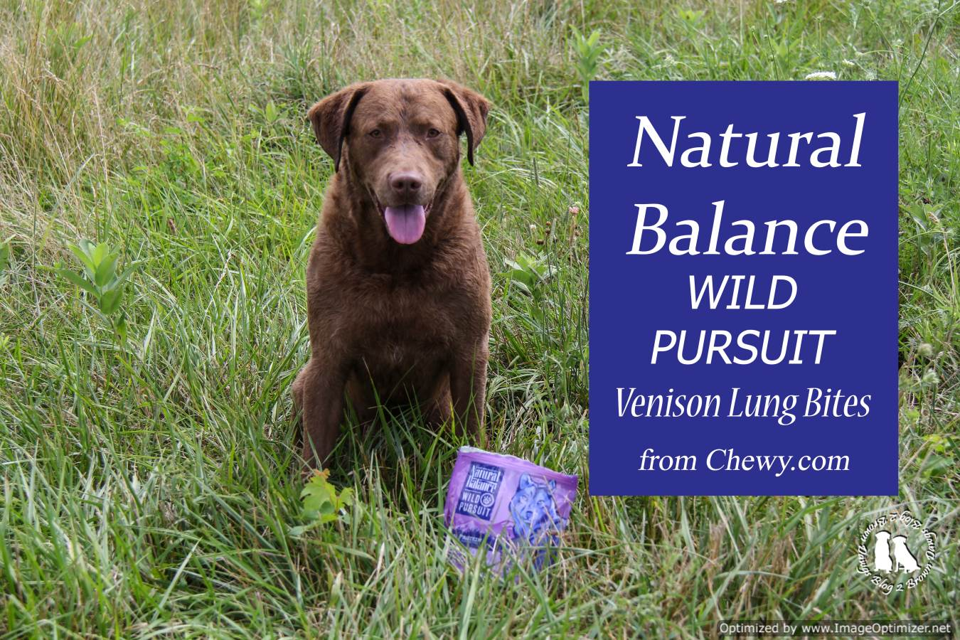 Natural Balance Venison Lung Bites