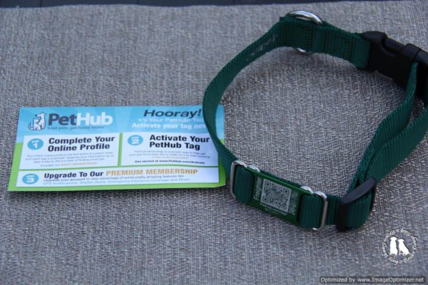 Collar With QR Code From Pet Hub