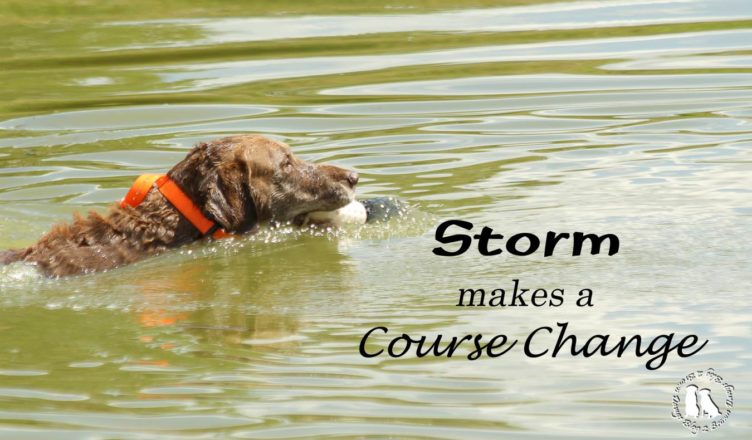 Storm Makes A Change In Course