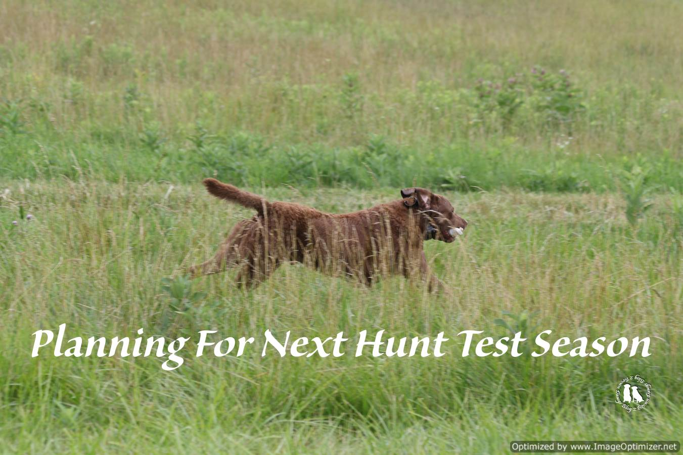 Planning For Next Hunt Test Season