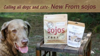 New From Sojos