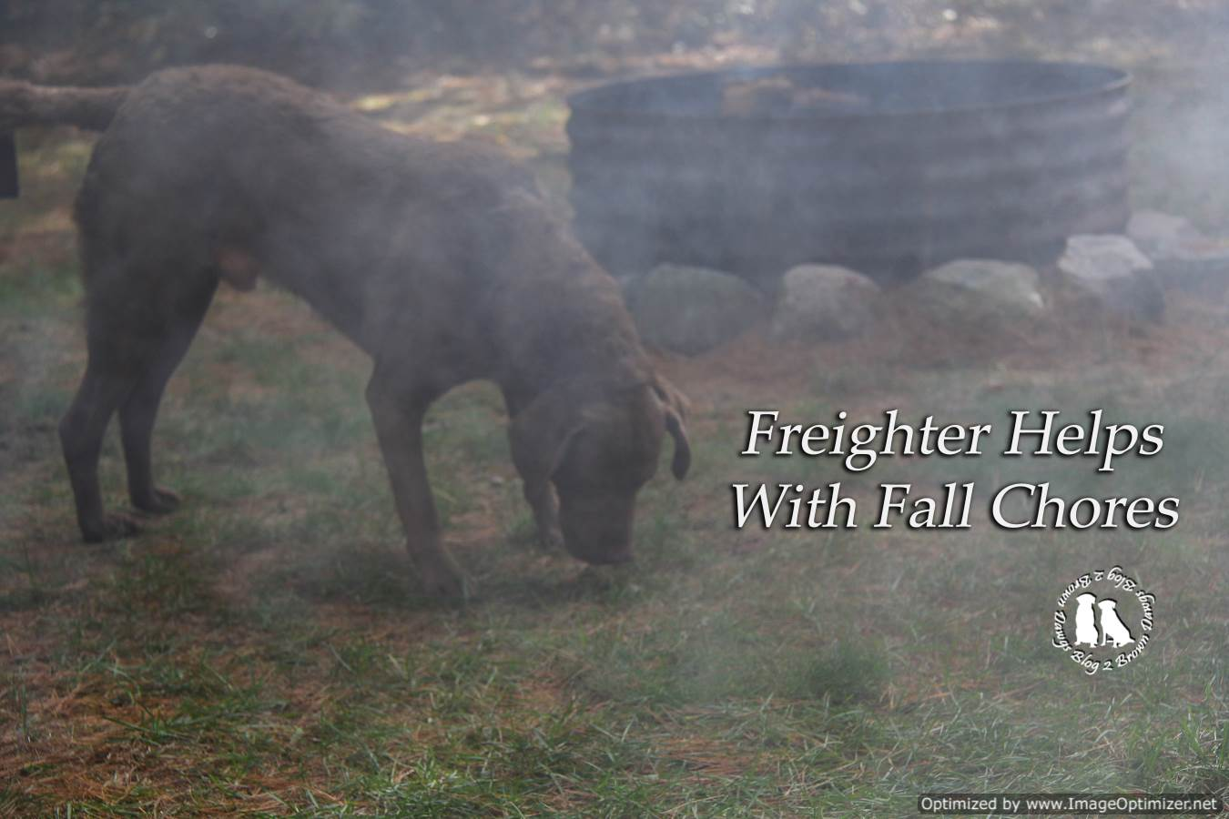Freighter Helps With Fall Chores