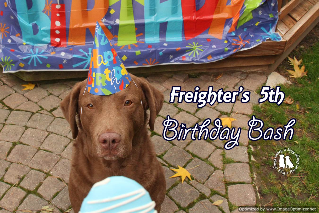 Freighter's 5th Birthday Bash