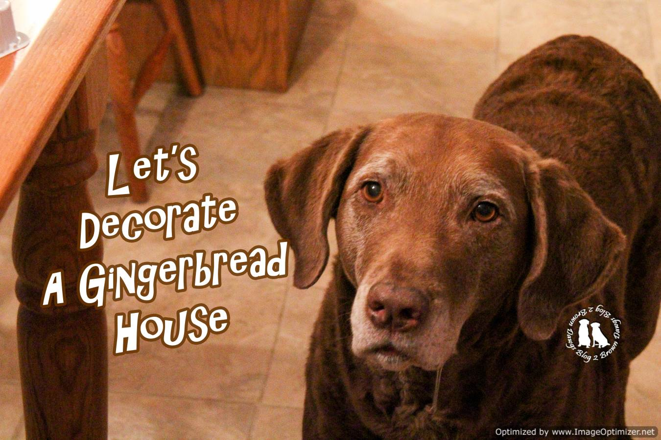 Let's Decorate A Gingerbread House