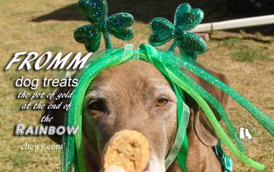 Fromm Dog Treats