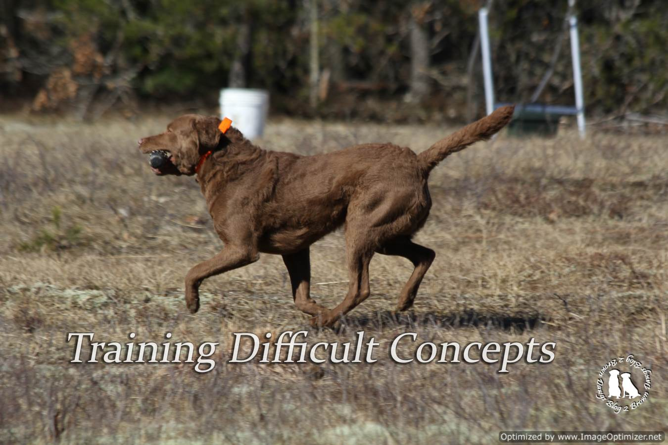 Training Difficult Concepts