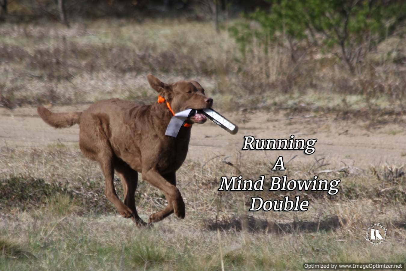Running A Mind Blowing Double