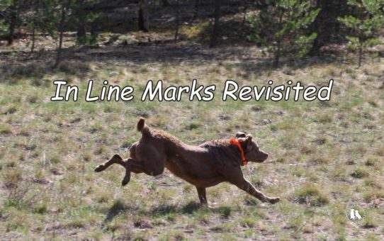 In Line Marks Revisited