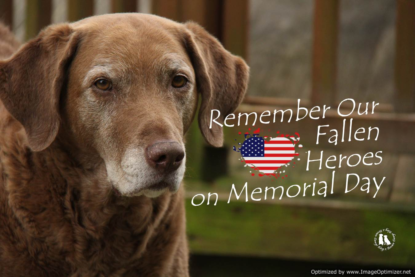 Remember Our Fallen Heroes