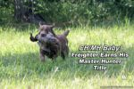 chesapeake bay retriever master hunter title