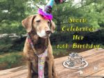 Storm Celebrates Her 10th Birthday